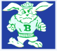 logo Benson High School